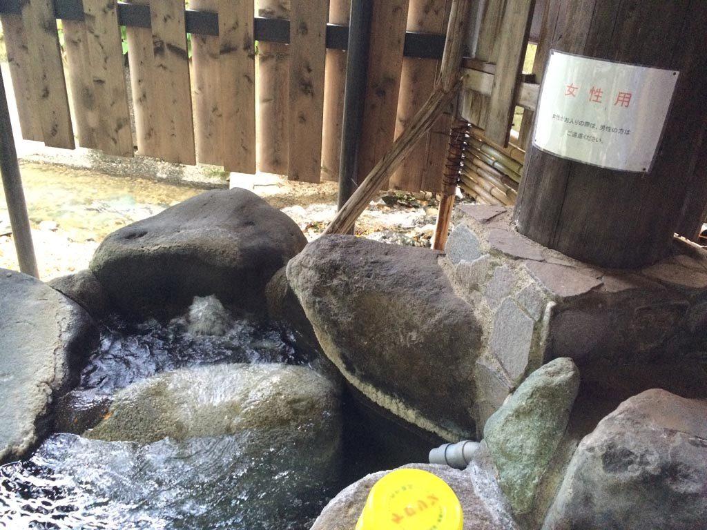 kimuraen51