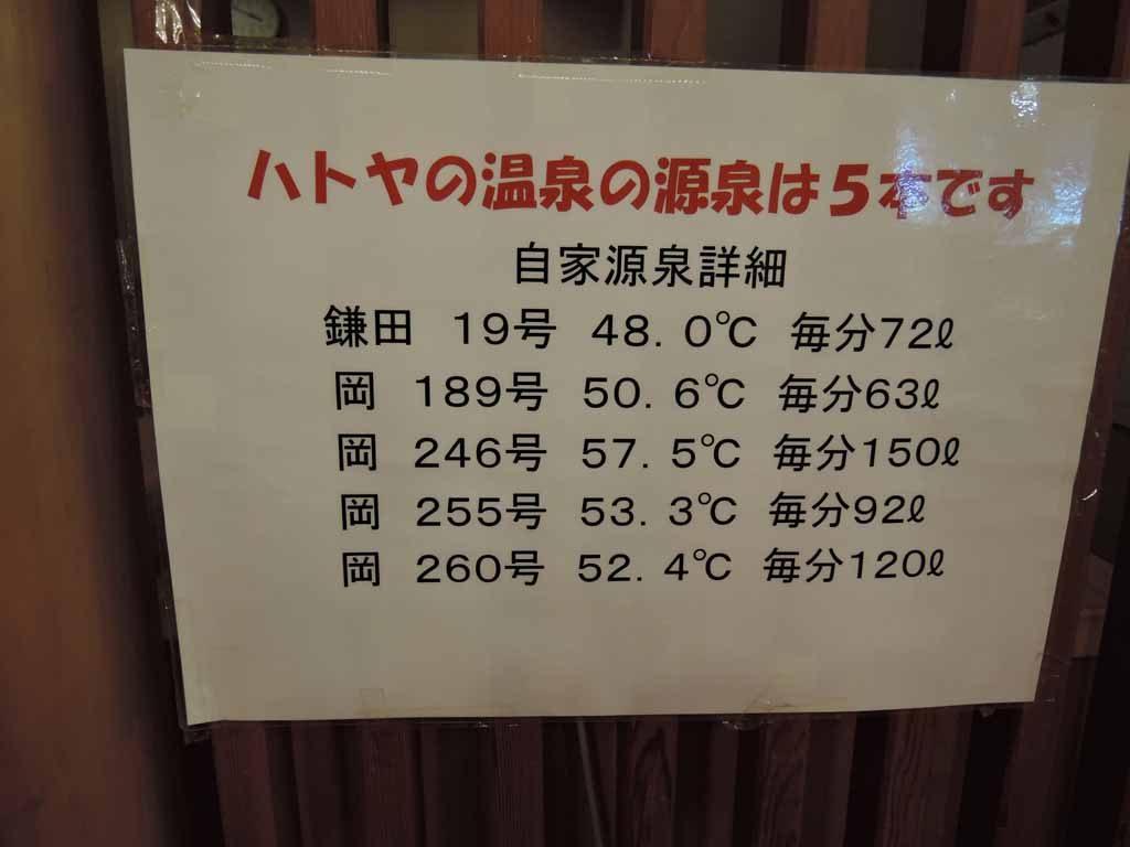 hatoya46