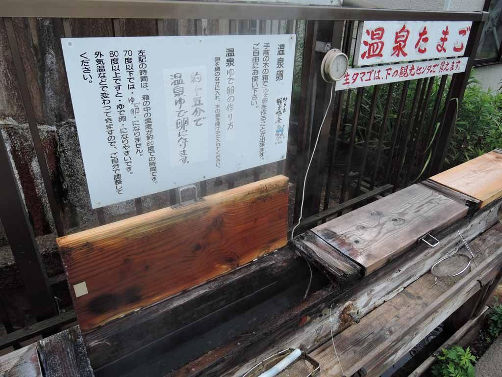 senami-y64